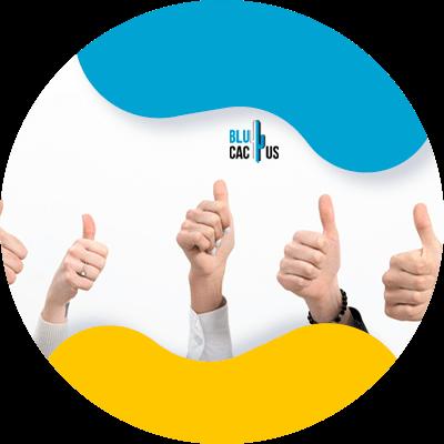 BluCactus - coaching - professional people working