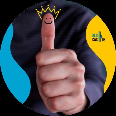BluCactus -Brand coaching - people working