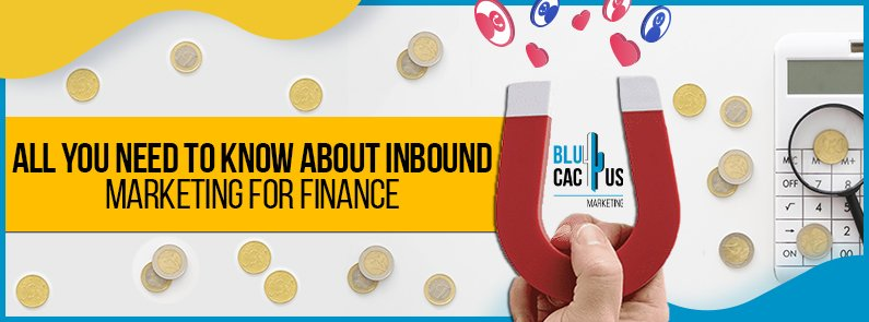 BluCactus - Inbound Marketing for finance - title
