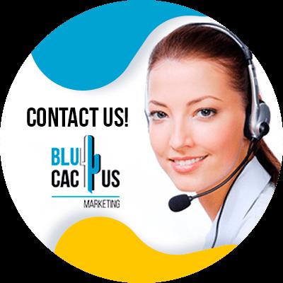 BluCactus - SEO trends - contact us