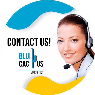 BluCactus - creation of an online store - people working
