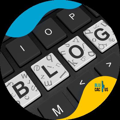 BluCactus - blog