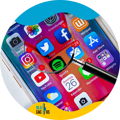 BluCactus - social networks