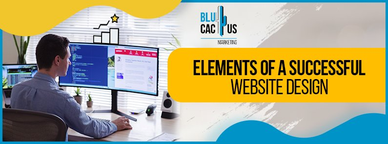 BluCactus -successful website design - title