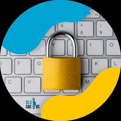 BluCactus - lock