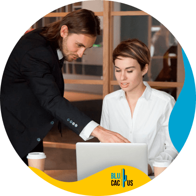 BluCactus - profesional people working