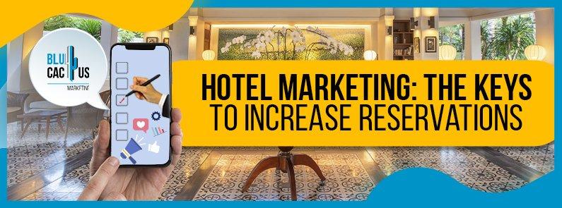 BluCactus - Hotel marketing - title