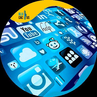 BluCactus - importance of marketing