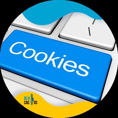 BluCactus - cookies