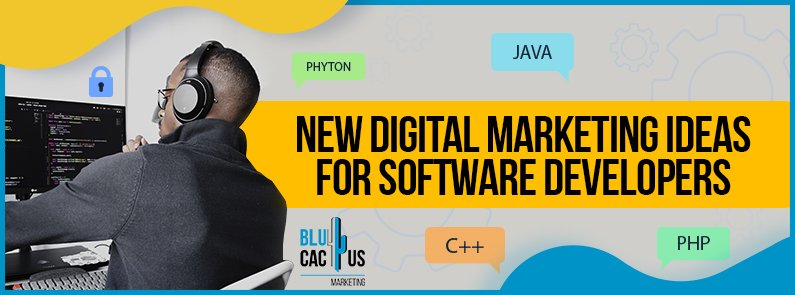 BluCactus - marketing ideas for software programmers - title