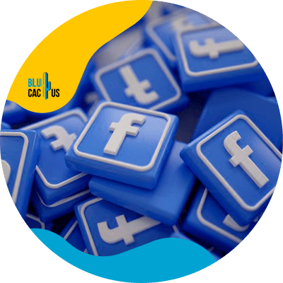 BluCactus - law firms - social media