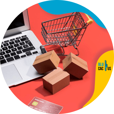 BluCactus - creation of an online store - technologycal device working