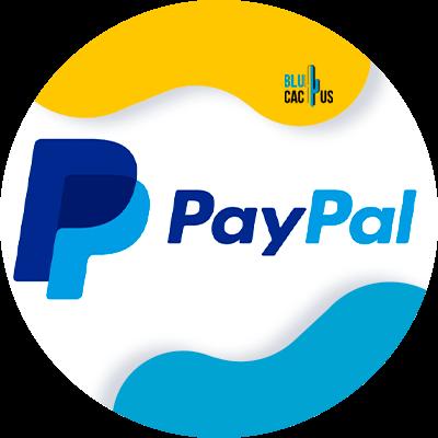 BluCactus - paypal