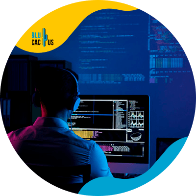 BluCactus - marketing ideas for software programmers - example of a software programmer data