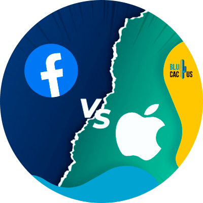 BluCactus - facebook