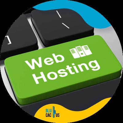 BluCactus - web hosting