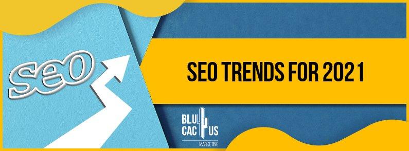 BluCactus - SEO trends - title