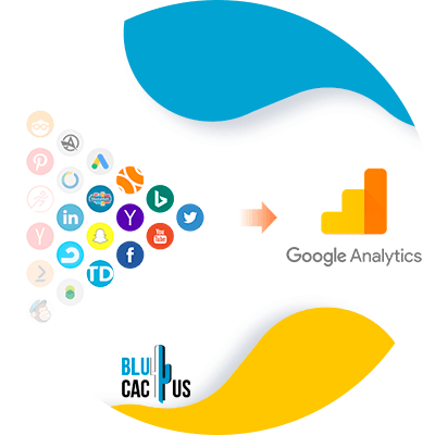 BluCactus - analytics
