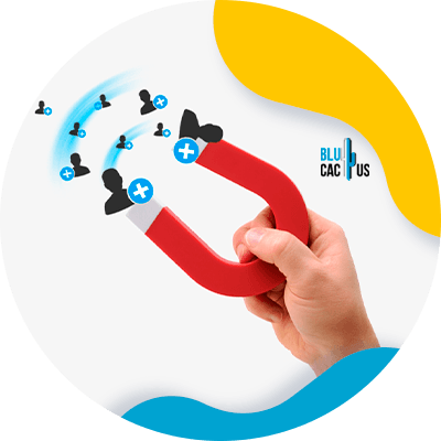 BluCactus -Inbound marketing for car insurers - example of important data