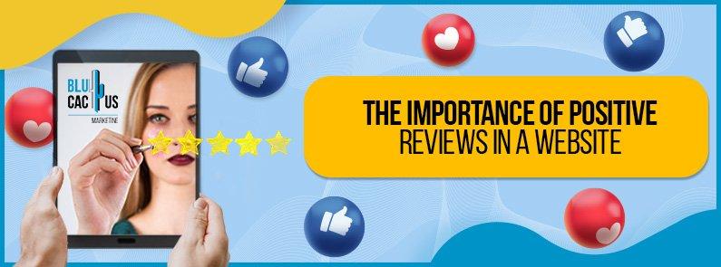 BluCactus - positive reviews - title