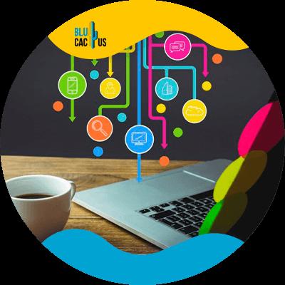 BluCactus - life coaching business - profesional people working