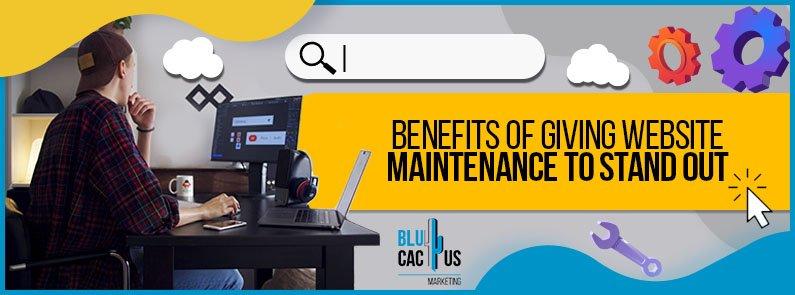 BluCactus - maintenance to your website - title