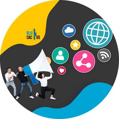 BluCactus -services