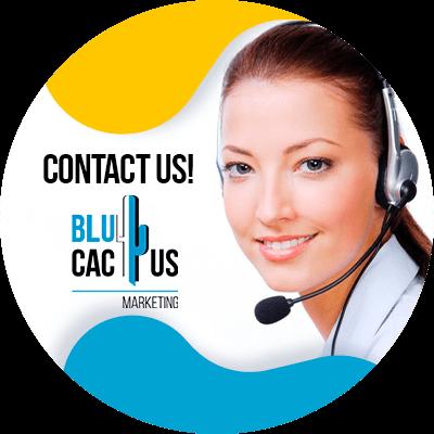 BluCactus - marketing strategies for car insurers - contact