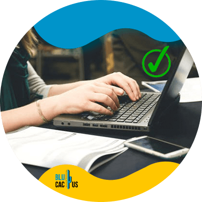 BluCactus - guest blogging - important information
