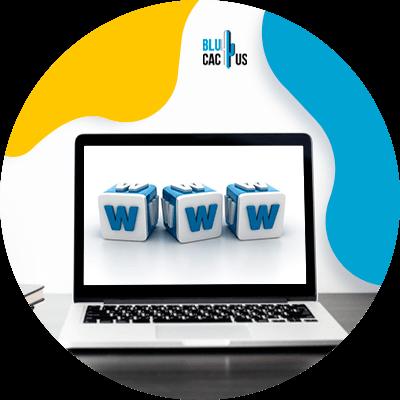 BluCactus - Online Loans - computer