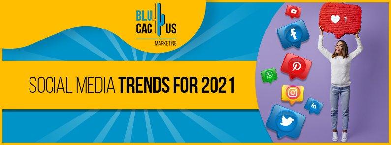 BluCactus - social media trends - title