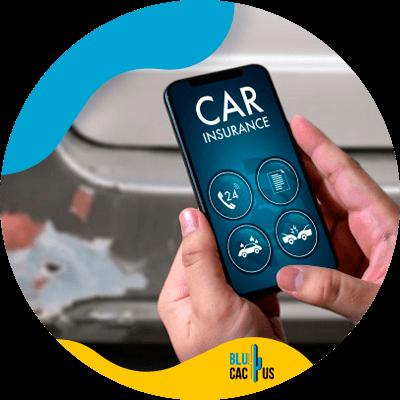 BluCactus - marketing strategies for car insurers - important information