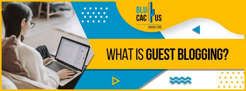 BluCactus - guest blogging - title