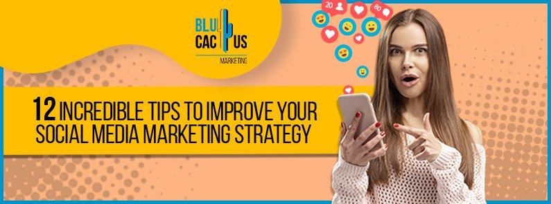 BluCactus -social media marketing efforts - title