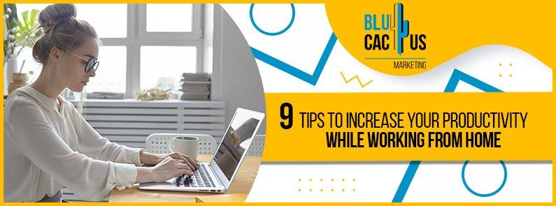 BluCactus - Teleworking tips - title