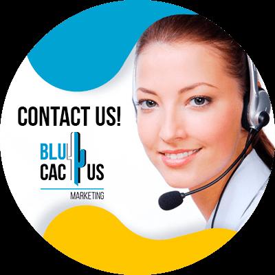 BluCactus -SEO Copywriting - contact us
