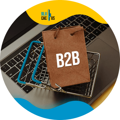 BluCactus -11 steps to create an effective B2B Marketing strategy - important data