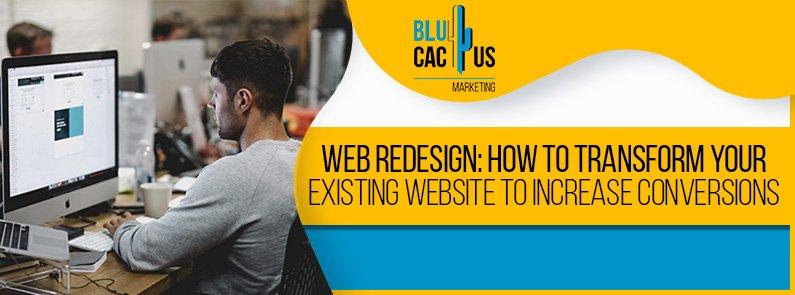 BluCactus - web redesign - title