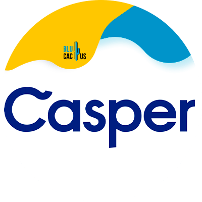 BluCactus - Crash Course in Influencer Marketing - casper