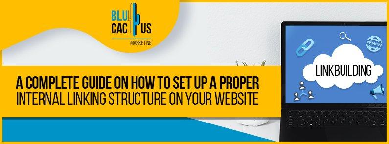 BluCactus - internal linking structure - title
