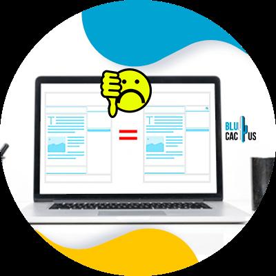 BluCactus - eCommerce SEO - important data
