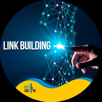 BluCactus - best off-page seo strategies - link building