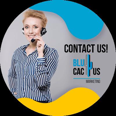 BluCactus - SEO Keywords - contact us