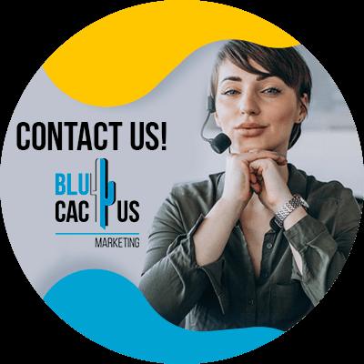 BluCactus - Contact us
