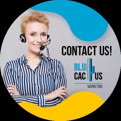 BluCactus - present a digital marketing strategy - contact us