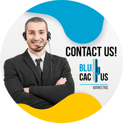 BluCactus - Audience Growth - Contact us