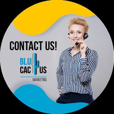 Blucactus- contact us