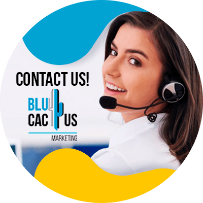 BluCactus - competitor keyword analysis for SEO - contact us