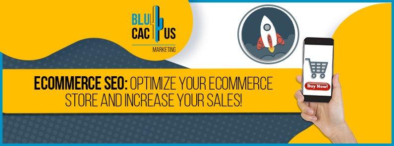 BluCactus - eCommerce SEO - title