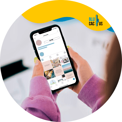 BluCactus - create the perfect instagram feed - important data